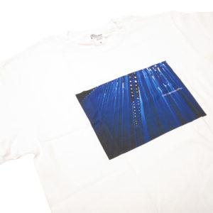 カラーコミュニケーションズ Tシャツ blue tube photo アウトレット